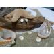 Boucle d'oreille oeil de Sainte Lucie et argent massif