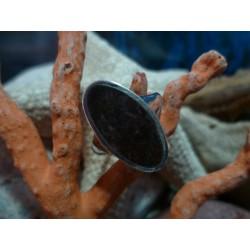 Bague argent massif et Rhyolite de l'Argentella